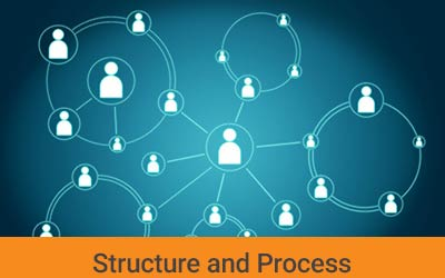The Field of Structure and Process