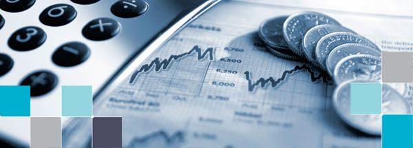 امکان سنجی پیاده سازی سیستم قیمت گذاری انتقالی در گروه مپنا